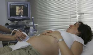 dziewica w ciąży, ciężarna dziewica