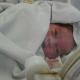 noworodek