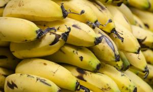 banany właściwości, końcówka banana, czarna końcówka banana