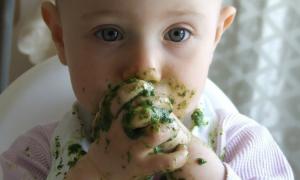 HiPP, produkty dla dzieci, dania dla dzieci, HiPP produkty, pleśń w HiPP