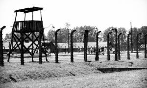 gimnazjalistki w obozie koncentracyjnym, Birkenau, obóz koncentracyjny