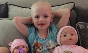 Darci Jackson, białaczka, fałszywa zbiórka pieniędzy