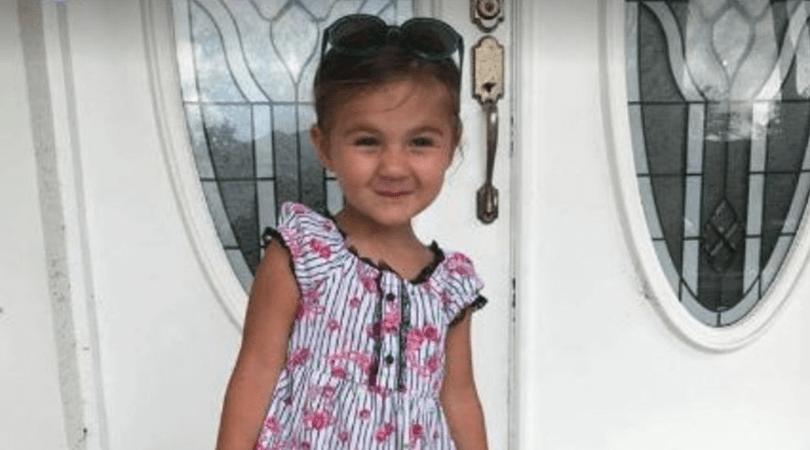 3-latka postrzelona, strzelanina na autostradzie, czarne bmw