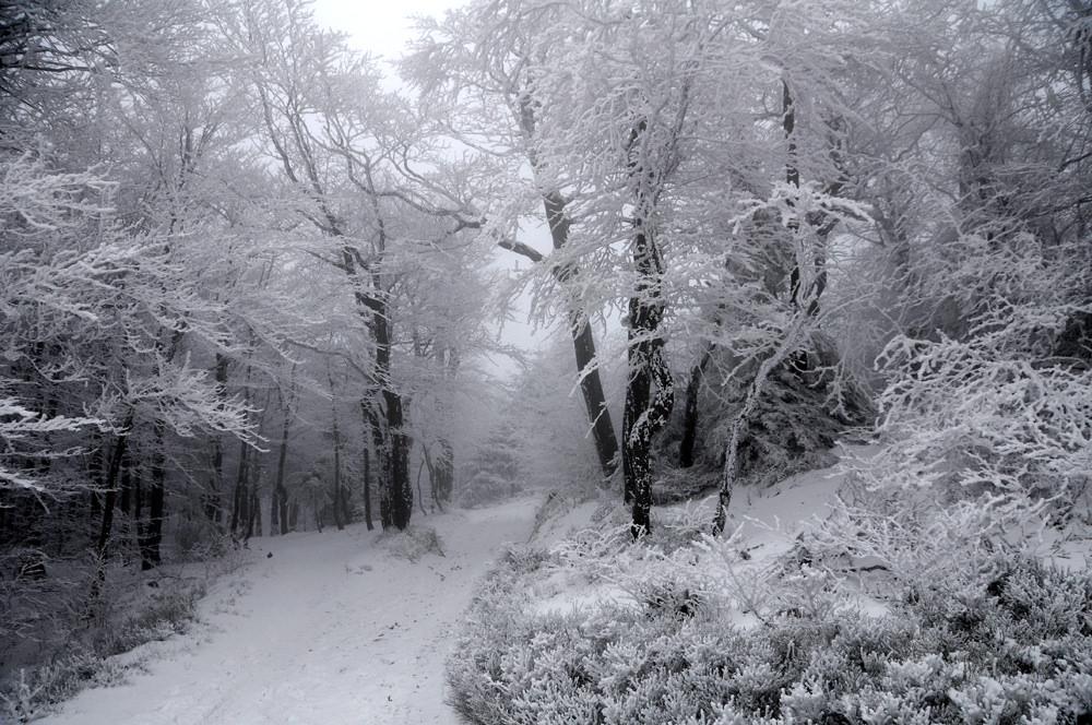 zima, mróz, Syberia