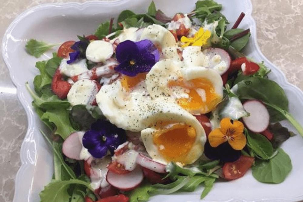 jadalne kwiaty, kwiaty w posiłku