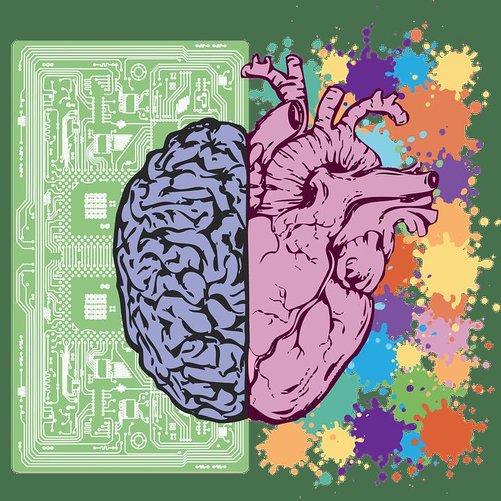 mózg, pamięć, magnez, pierwiastek