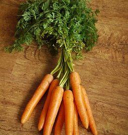 marchewkę