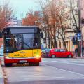autobusie