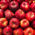 jabłkowego