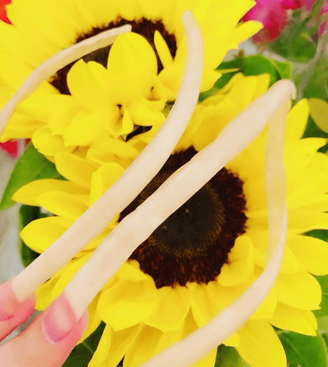 paznokci